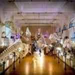 המוזיאון האוקיינוגרפי של מונקו – Le Musée océanographique de Monaco