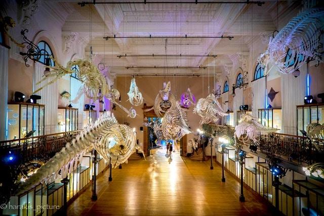 המוזיאון האוקיינוגרפי במונקו