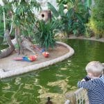 הפארק הזואולוגי (גן החיות) של מונקו – Le jardin animalier
