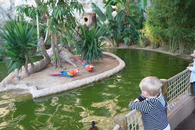גן החיות של מונקו