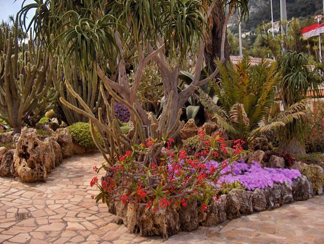 הגן האקזוטי - מונקו